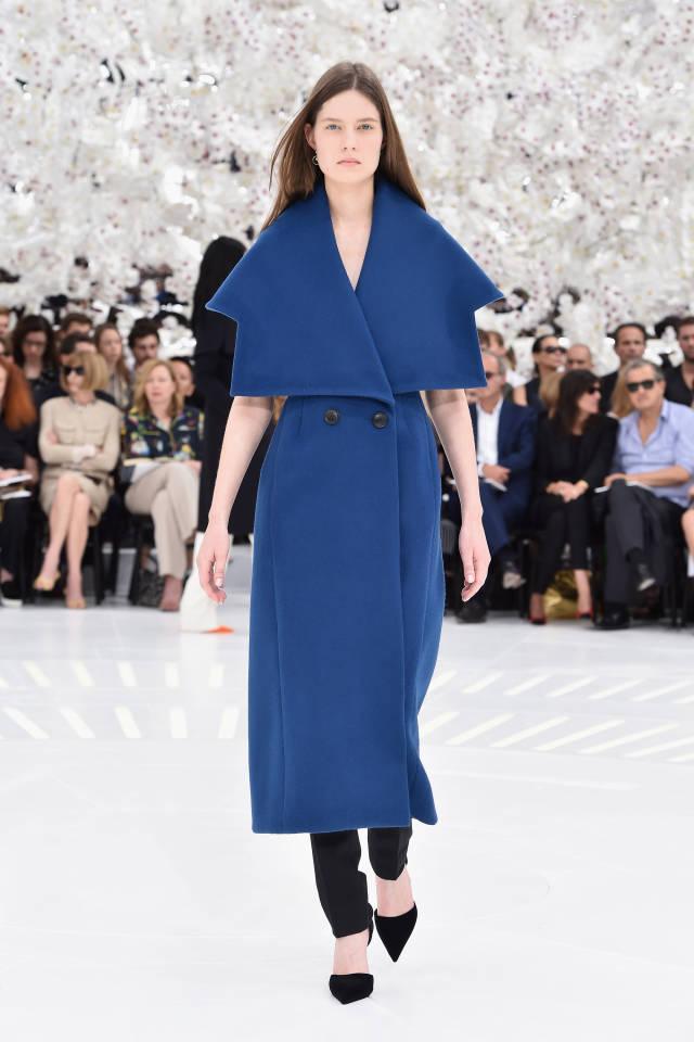 hbz-fw-couture-2014-dior-43-sm
